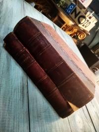 Чтец Декламатор, литературный сборник, тома: 1,2